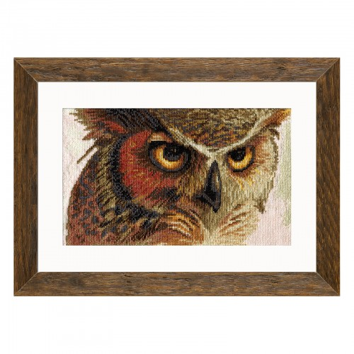 "Cross stitch kit with white canvas ""Eagle-owl"""