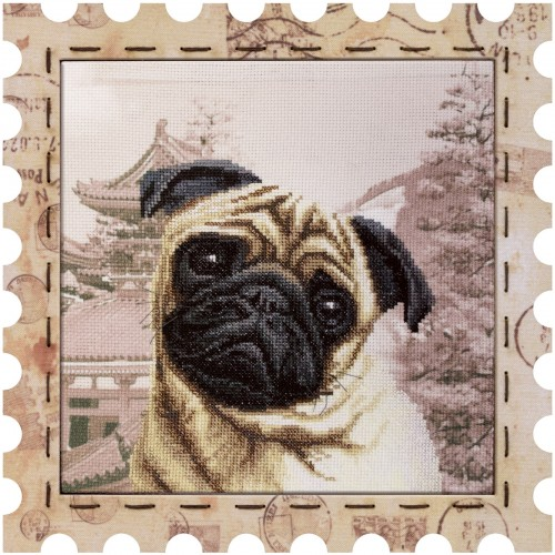 "Cross stitch kit with canvas and frame ""Mops"""