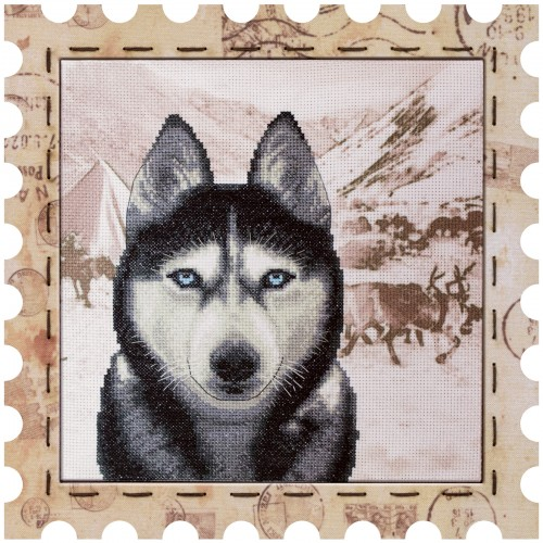 "Cross stitch kit with canvas and frame ""Husky"""