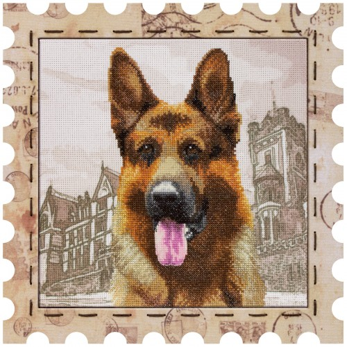 "Cross stitch kit with canvas and frame ""Sheepdog"""
